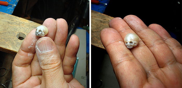 Nakaba schedel parel